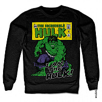 The Hulk mikina, I Am The Hulk Sweatshirt Black, pánská